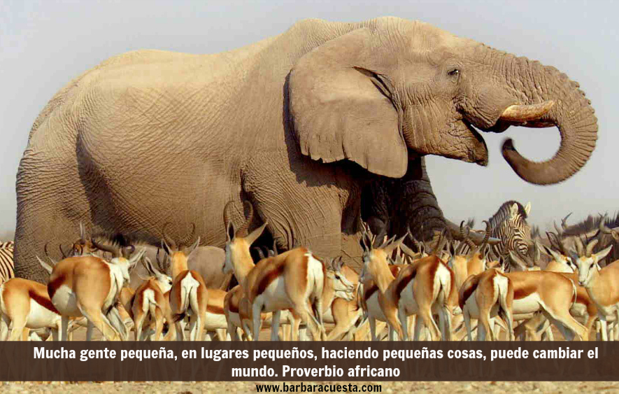 An African elephant towers above herds of antelope and zebra as they congregate at a precious waterhole on the Etosha salt pan in Namibia.